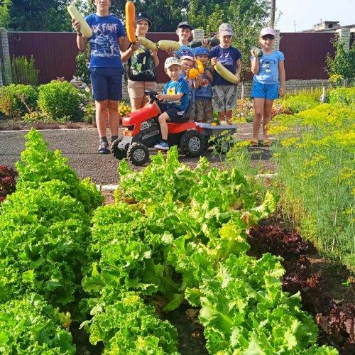 Школа садовода и огородника «Погребок»